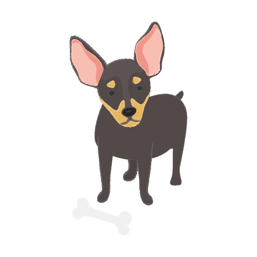 Puppy Wear Co. messages sticker-10