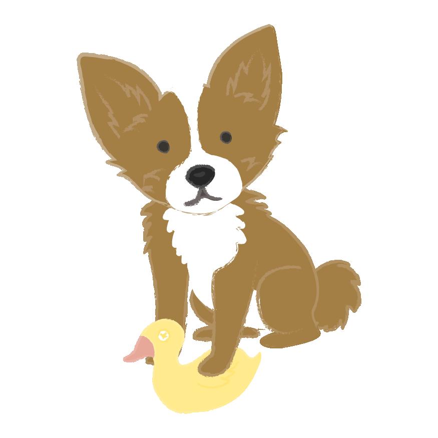 Puppy Wear Co. messages sticker-5