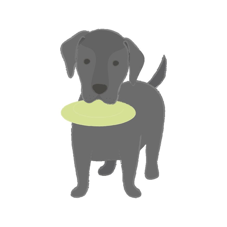 Puppy Wear Co. messages sticker-9