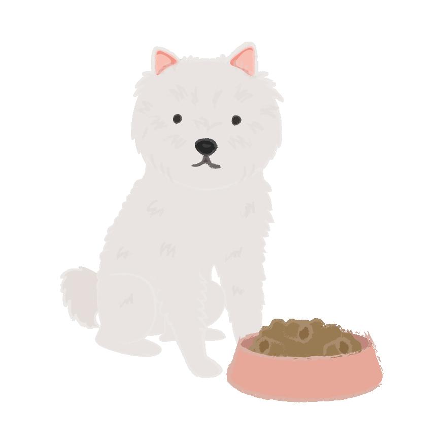 Puppy Wear Co. messages sticker-11