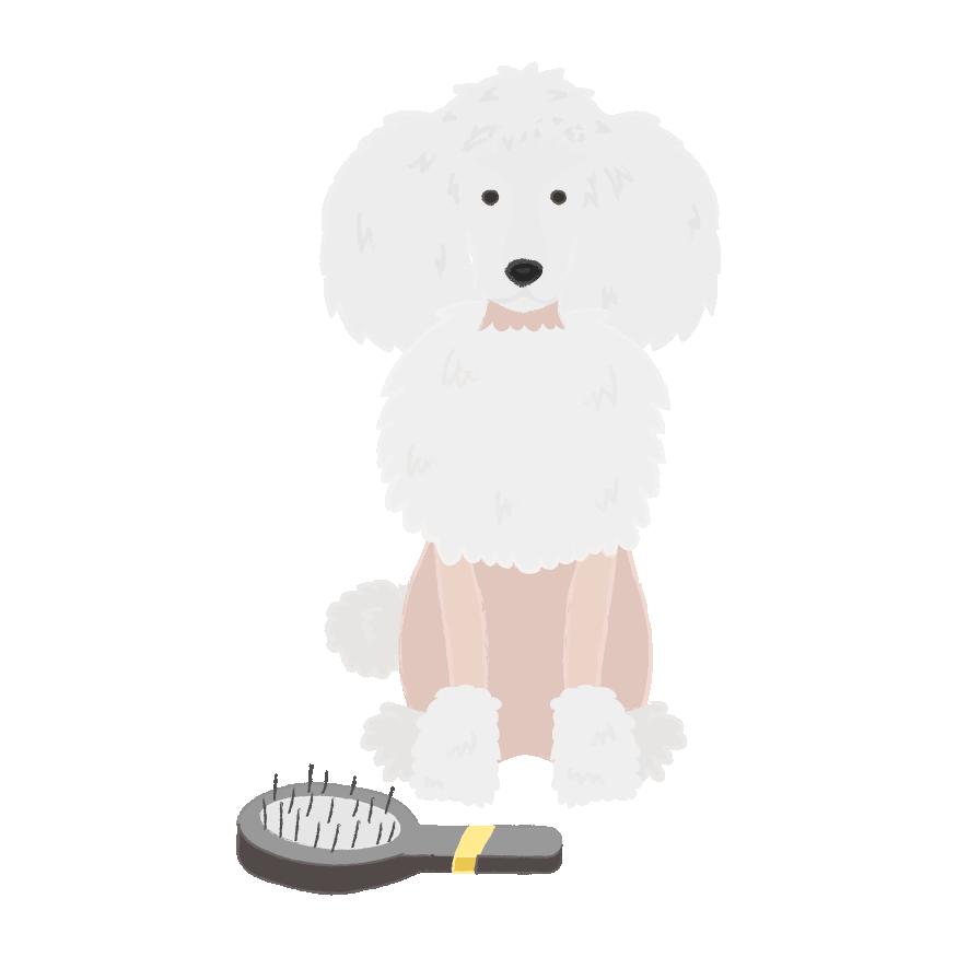 Puppy Wear Co. messages sticker-6