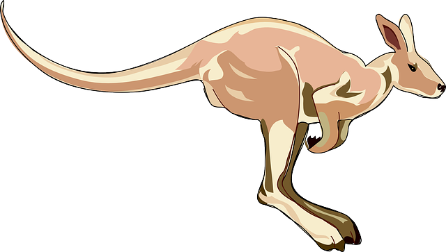 Kangaroo Stickers messages sticker-6