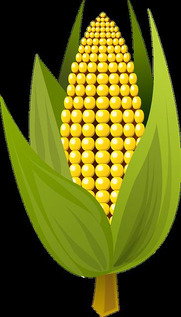 Corn Stickers messages sticker-8