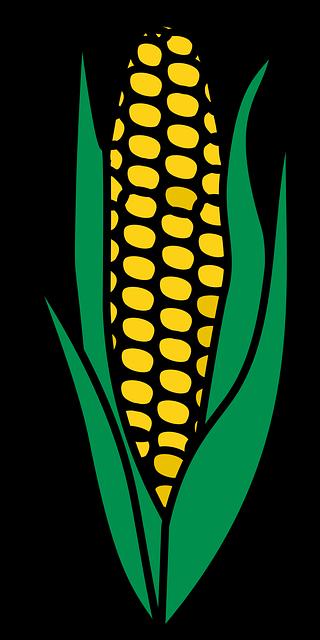 Corn Stickers messages sticker-5