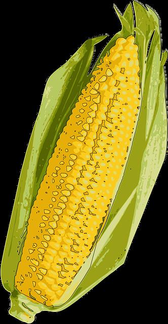 Corn Stickers messages sticker-4