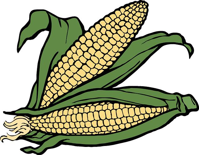 Corn Stickers messages sticker-6