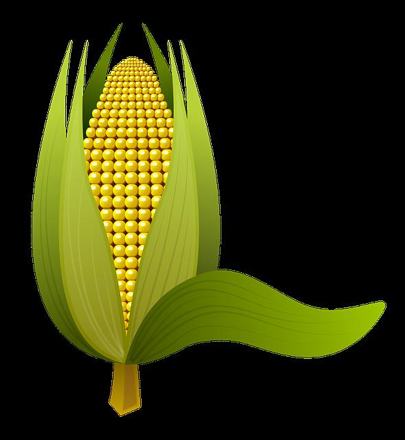 Corn Stickers messages sticker-3