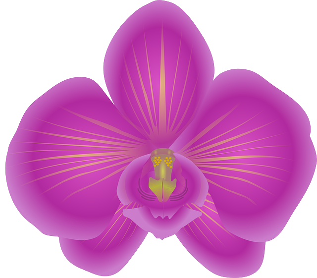 Orchid Stickers messages sticker-0