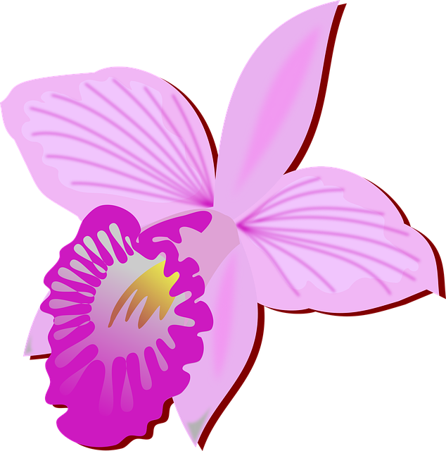 Orchid Stickers messages sticker-1