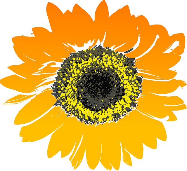 Sunflower Stickers messages sticker-2