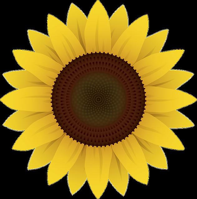 Sunflower Stickers messages sticker-1