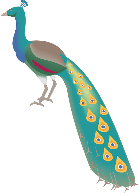 Pretty Peacock Stickers messages sticker-9
