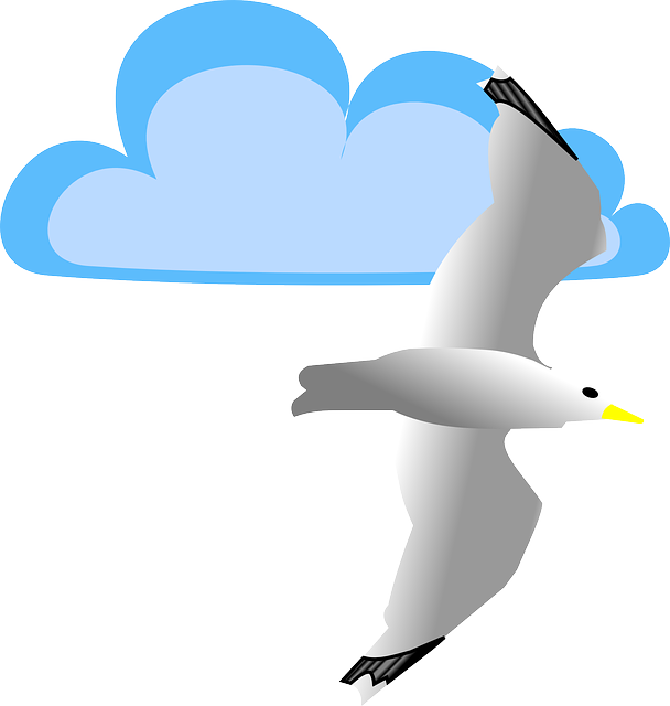 Seagull Stickers messages sticker-4