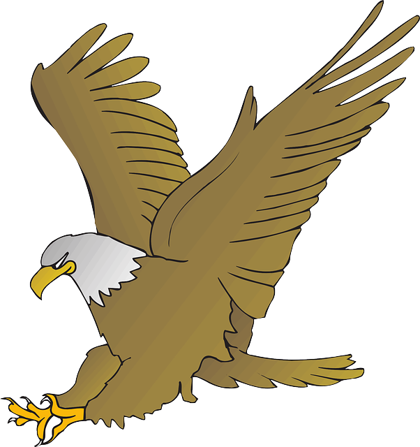 Exquisite Eagle Stickers messages sticker-3