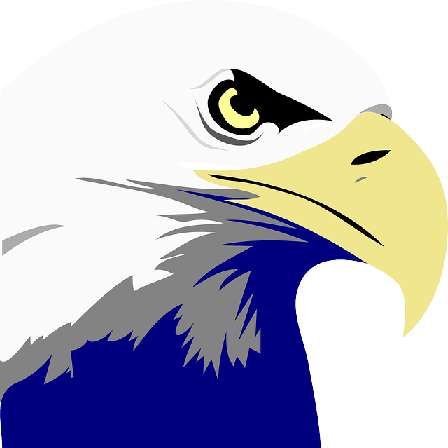 Exquisite Eagle Stickers messages sticker-1