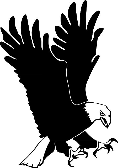Exquisite Eagle Stickers messages sticker-10