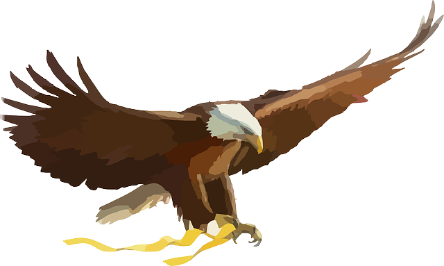 Exquisite Eagle Stickers messages sticker-7