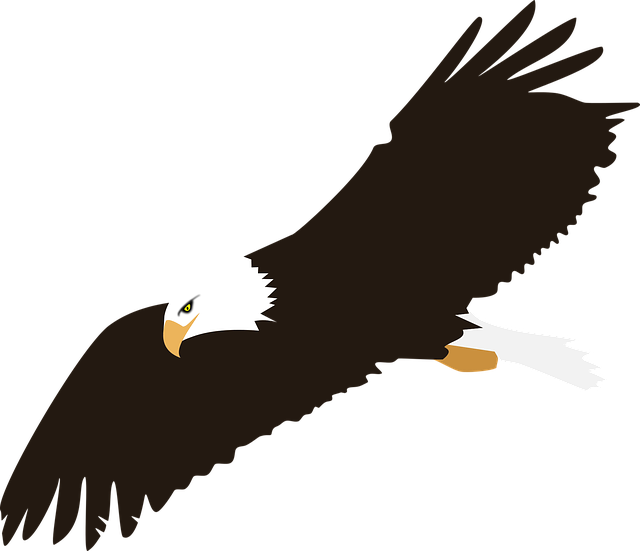Exquisite Eagle Stickers messages sticker-5
