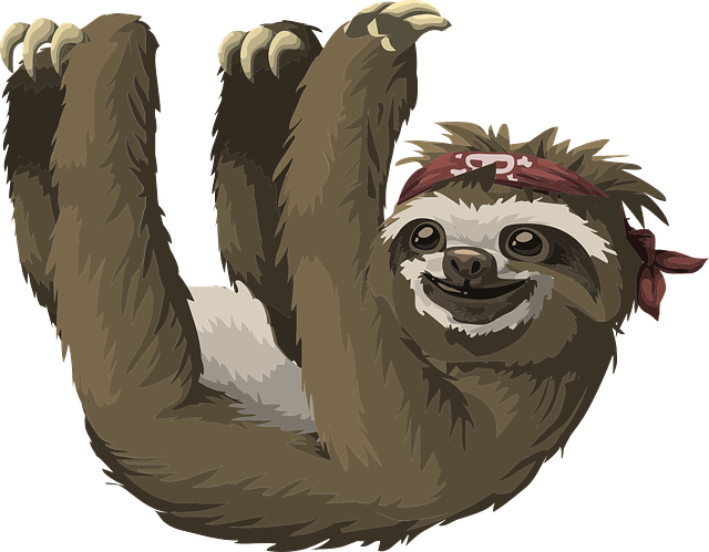 Slow Sloth Stickers messages sticker-0