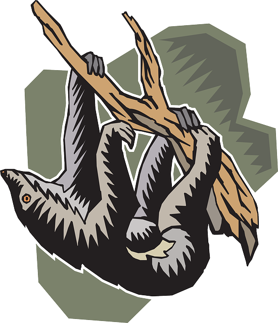 Slow Sloth Stickers messages sticker-5