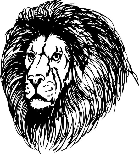 Lion Stickers messages sticker-5