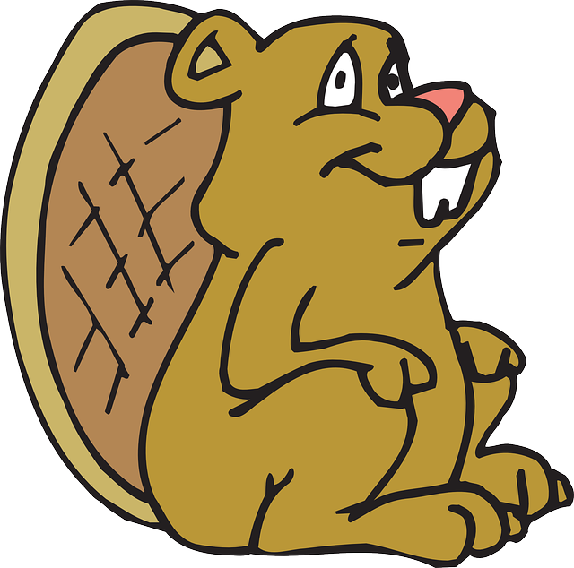 Best Beaver Stickers messages sticker-1