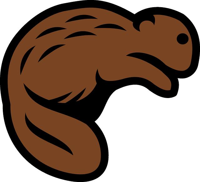 Best Beaver Stickers messages sticker-7