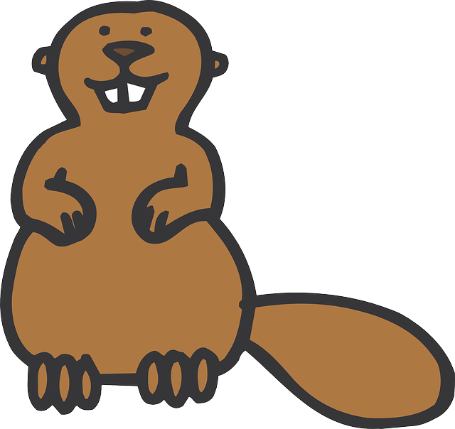 Best Beaver Stickers messages sticker-2
