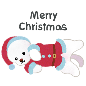 Christmas bichon Yallet messages sticker-1