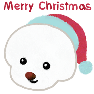 Christmas bichon Yallet messages sticker-0