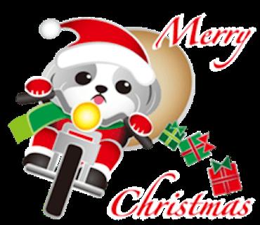 Merry Christmas Shih Tzu Dog messages sticker-6