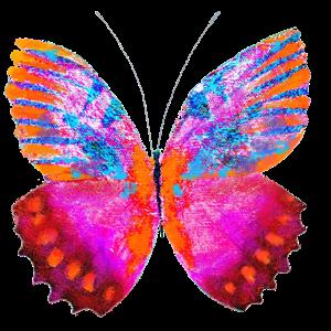 Haulwen Butterflies messages sticker-7