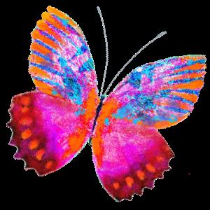 Haulwen Butterflies messages sticker-10