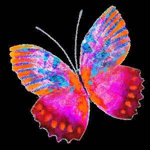Haulwen Butterflies messages sticker-9