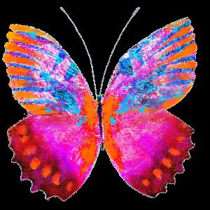 Haulwen Butterflies messages sticker-6