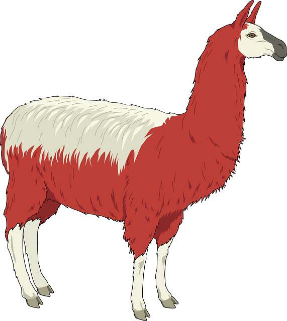 Lotsa Llama Stickers messages sticker-3