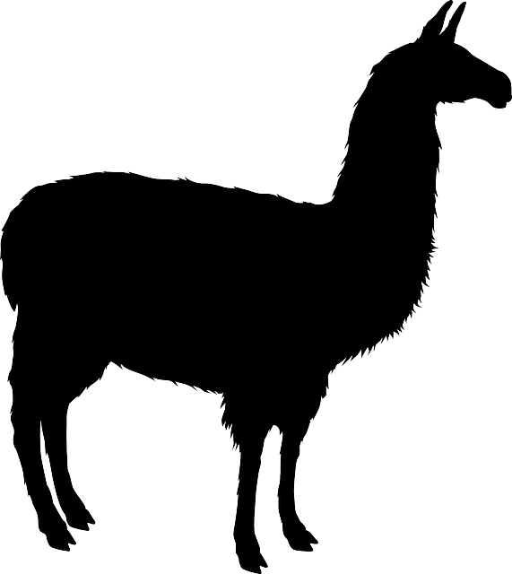 Lotsa Llama Stickers messages sticker-9