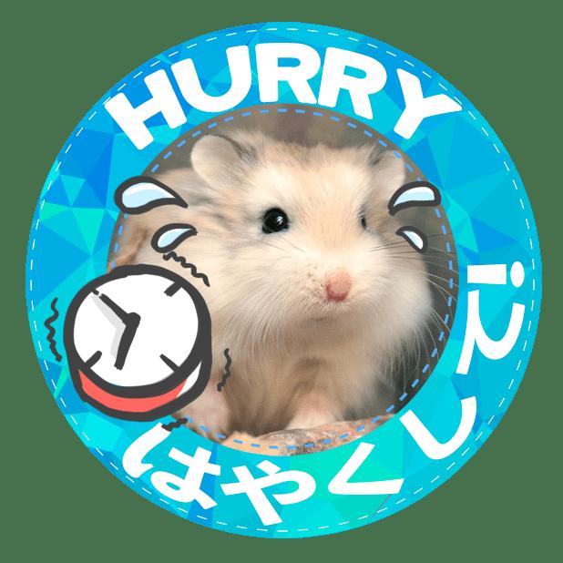 HammyVille 1 messages sticker-6