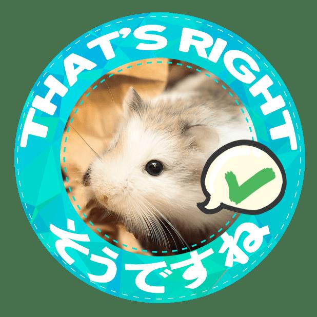 HammyVille 1 messages sticker-5