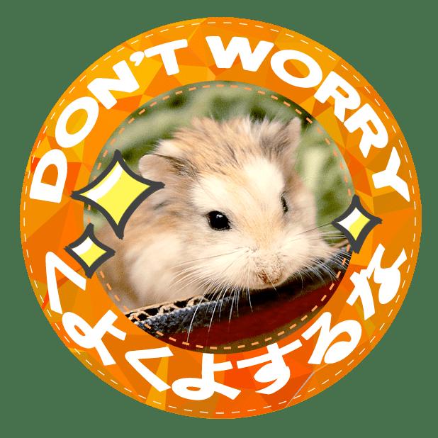 HammyVille 1 messages sticker-0