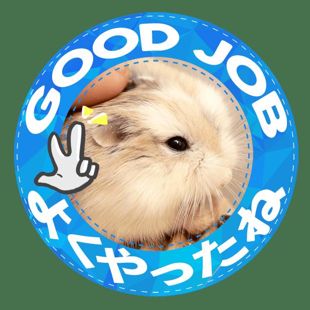 HammyVille 1 messages sticker-3