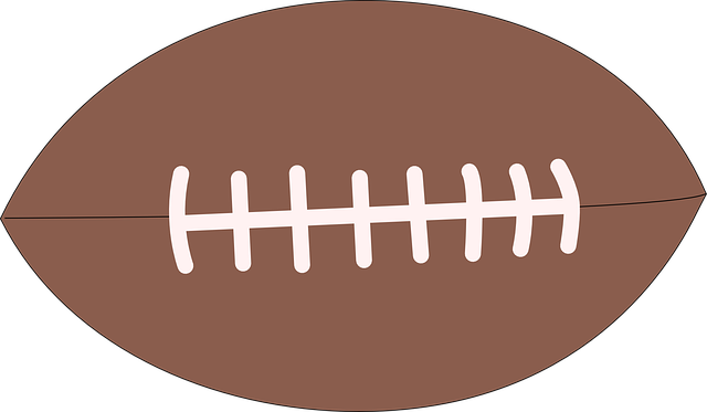 North American Football messages sticker-4