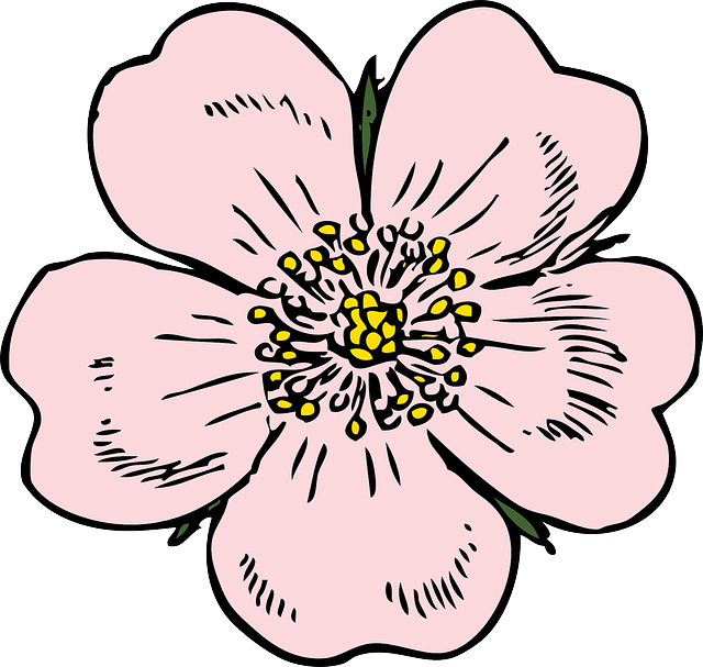 Apple Blossoms messages sticker-1