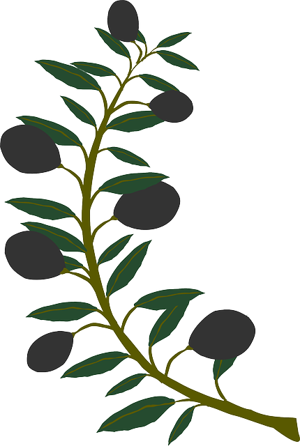 Olive Branch Stickers messages sticker-0