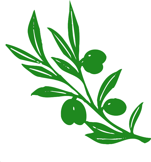 Olive Branch Stickers messages sticker-10