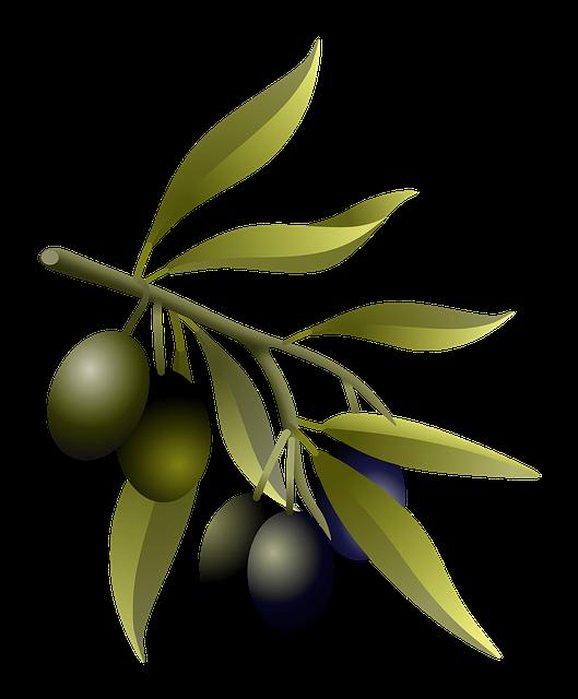 Olive Branch Stickers messages sticker-3