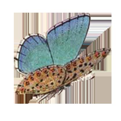 1001 Butterflies messages sticker-8