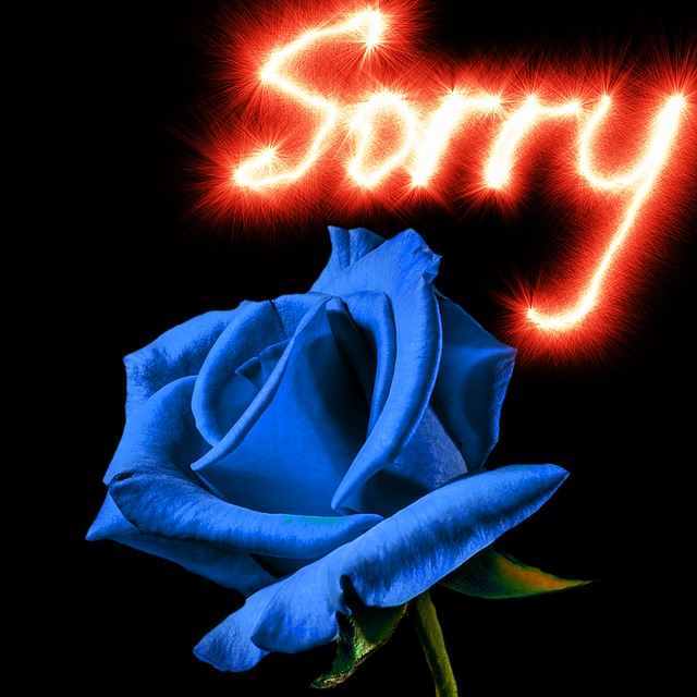 So So Sorry messages sticker-2