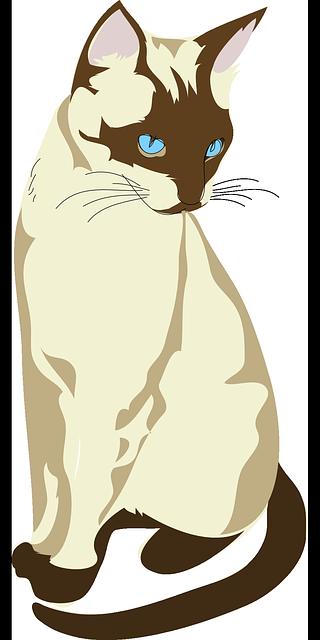 Cat Graphics messages sticker-4