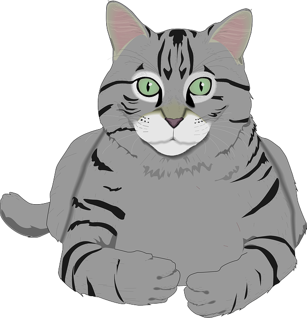 Cat Graphics messages sticker-8